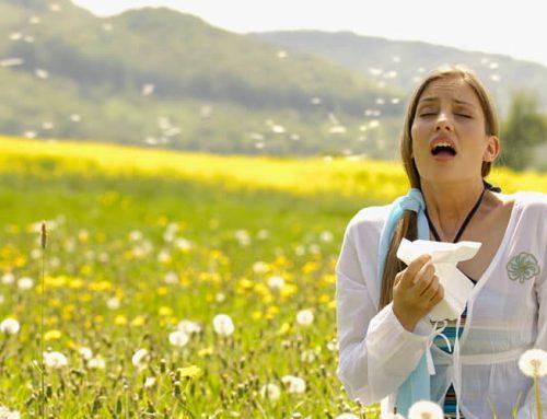 A tavasz betegségei